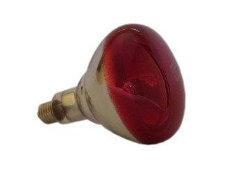 Żarówka promiennika PHILIPS 250W czerwona