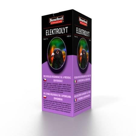 Elektrolyt H 1L