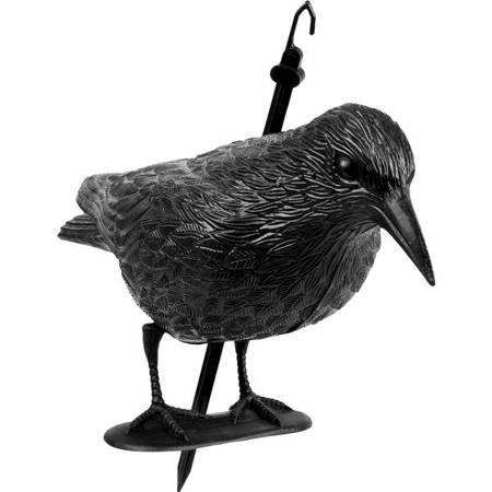 Odstraszacz ptaków Kruk stojący